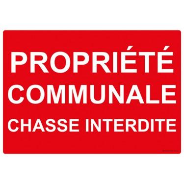 Panneau rectangulaire Propriété Communale Chasse Interdite