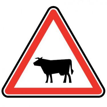 Panneau Passage d'animaux domestiques - vache - A15a1