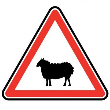 Panneau Passage d'animaux domestiques - mouton - A15a2
